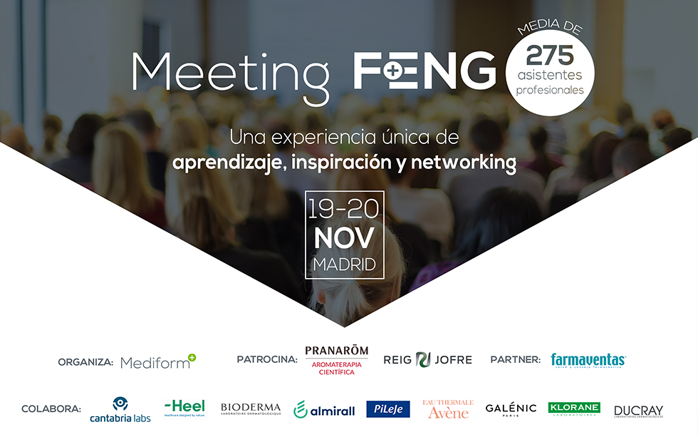 IX Meeting Feng 19 i 20 de novembre a Madrid
